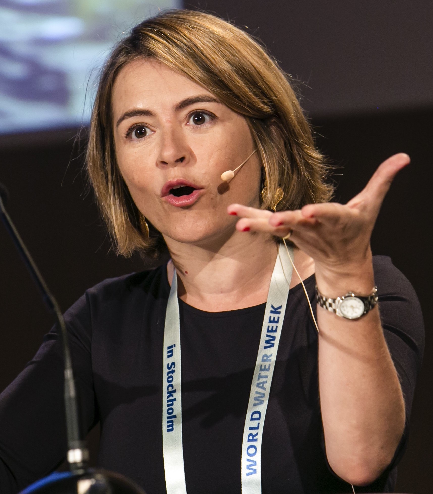 Catarina de Albuquerque, SWA CEO