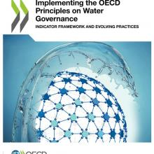 Evolving Water Governance Practices